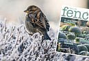 Kraakvers: de wintereditie van Fence Tuinmagazine